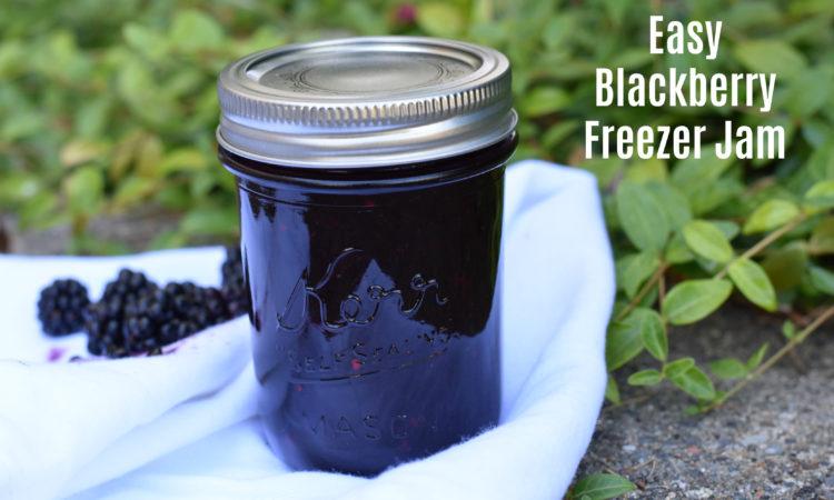 Blackberry Freezer Jam - Toddler Test Kitchen